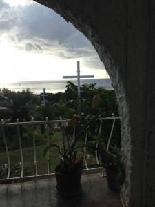 birdhouse view